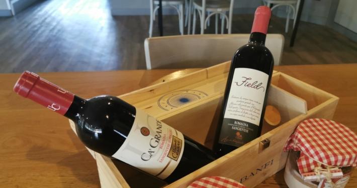 foto field vino